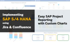 sap-reporting-custom-charts-illustration